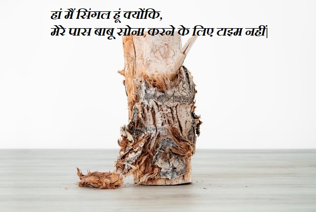 This image has an empty alt attribute; its file name is Attitude-Status-In-Hindi-26.jpg
