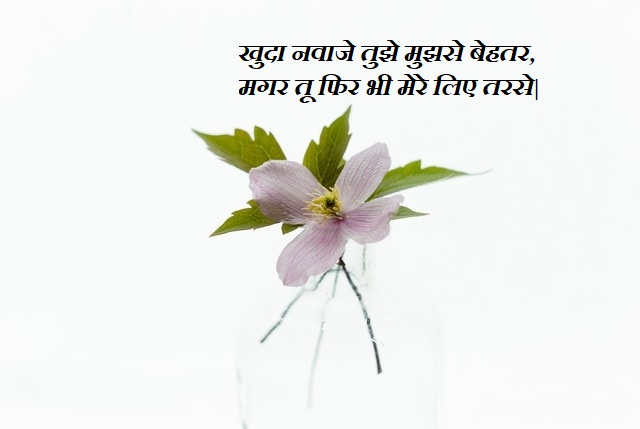 This image has an empty alt attribute; its file name is Attitude-Status-In-Hindi-31.jpg